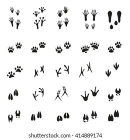 Set of traces of animals and birds, vector illustration.