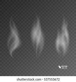 Set of transparent smoke on dark background. vector 10_eps