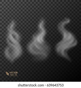 Set of transparent smoke on dark background. vector 10_eps
