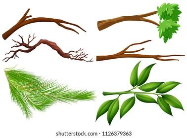 A Set of Tree Branch illustration