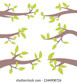 Set of tree branches vector design