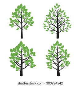Set of Tree and Green Leafs. Vector Illustration.