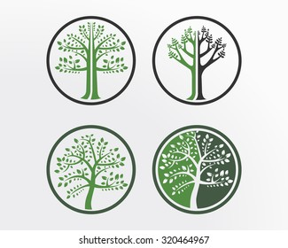 Set tree icon concept of a stylized tree with leaves