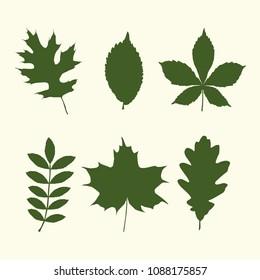 Set of tree leaves shapes