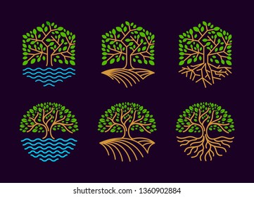 Set tree logo is hexagonal and round. logo, icon, label template. - vector