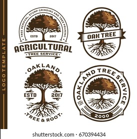 Set Tree and Root logo template