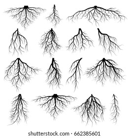 Set of tree roots. silhouette vector Illustration.