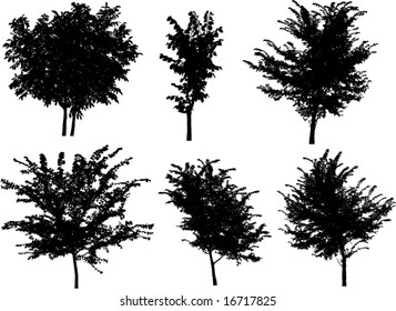 set of tree silhouettes, ideal for design element