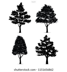 Set of tree silhouettes isolated on white background for landscape design and architectural compositions with backgrounds. Vector illustration.