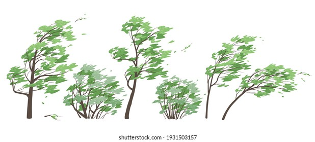 Set of trees and bushes with green leaves isolated on white background. Deciduous tree in blowing wind, windy weather, plants during a storm. Simple vector illustration in flat cartoon style.