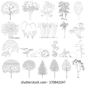 Set of trees, bushes, plants. Side view. Vector illustration. Drawing on a white background
