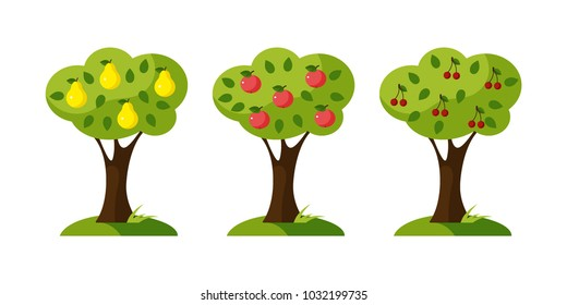 A set of trees, a pear tree, an apple tree and a cherry tree, a flat design. Vector illustration. EPS10