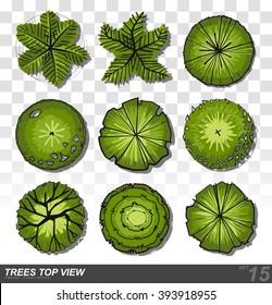 Set of Trees top view for landscape design- vector illustration
