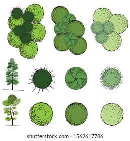 Eine Reihe von Baumsymbolen für architektonische oder landschaftliche Gestaltung
