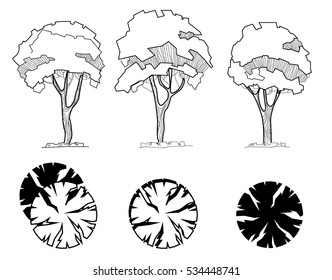 Set of treetop symbols, for architectural or landscape design. Different hand drawn trees isolated on white background, sketch, architectural drawing style trees set. Top and front view.
