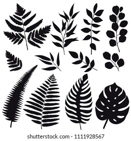 Set trend leaves silhouettes isolated on white background for design. Vector EPS10