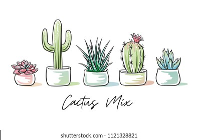 Set of trendy colorful succulents and cactus plants in garden pottery with hand written font. Hand drawn doodle sketch vector illustration.
