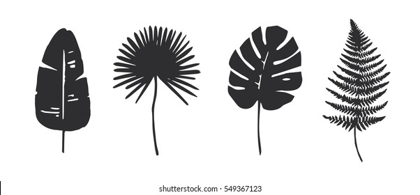 Set of Trendy Tropical Leaves. Vector. Silhouette