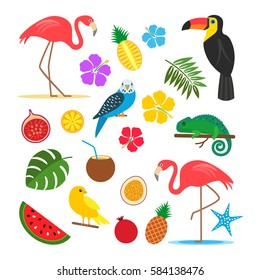 Set of tropical, exotic elements from plants, animals, birds and fruits. stickers. flat vector illustration isolate on a white background