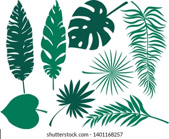 Set of tropical leaf silhouette elements set isolated on white background. Palm, fan palm, monstera, banana leaves. Vector illustration in green and white colors