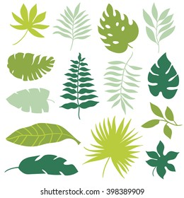 Tropical Leaves Hd Stock Images Shutterstock Find the best free stock images about tropical. https www shutterstock com image vector set tropical leaves 398389909