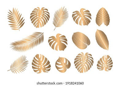 Set of tropical leaves. Isolated gold silhouettes of leaves on a white background. Sketch, design elements. Vector.