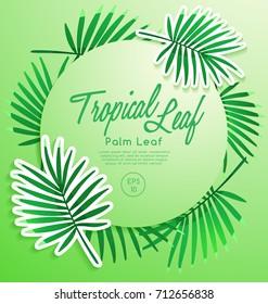 Set of Tropical Leaves : Palm Leaf : Vector Illustration
