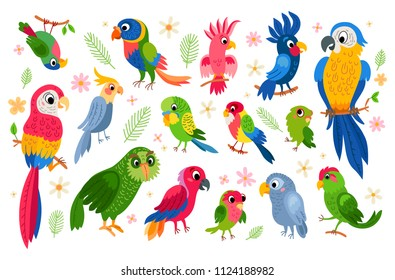 Set of tropical parrots. Vector cartoon parrots characters isolated on white background. Brazil animal in jungle with palm leaves and flowers