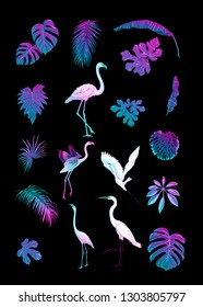 Set of tropical plans, flowers and birds. Stickers, elements for design. Isolated on black background in neon, fluorescent colors. Colored vector illustration.