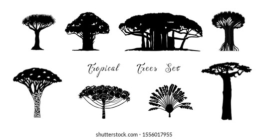 Set of tropical vector trees