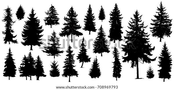 Set of Twenty One different silhouettes of pine trees. Handmade.