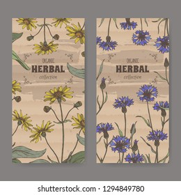 Set of two color labels with Arnica montana aka oountain arnica and Centaurea cyanus aka cornflower. Hadn drawn sketch. Herbal collection. Great for traditional medicine, or gardening.