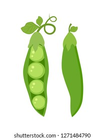 Set of two  green peas isolated on white background vector illustration.