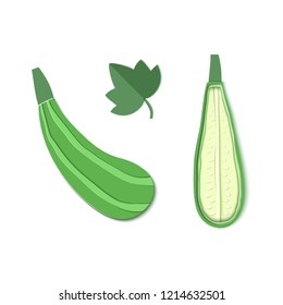 Set of two paper cut zucchini. Origami squash whole and half. Collection of vegetable marrow and leaf. Vector card illustration. Harvest courgette organic ingredient in paper art style.