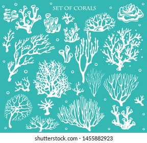 Set of underwater coral reef plants. Tropical coral elements collection