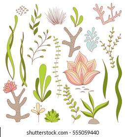 Set of Underwater Whimsical Plants - Seaweed, Coral, Flowers. Isolated on White. Vector Illustrations.