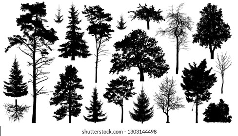 Set of a variety of forest trees. Isolated on white background. Collection of silhouette vector illustration