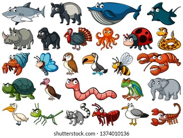 Set of various animals illustration