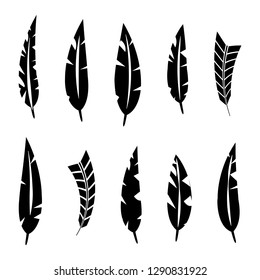 Set of various bird feathers. Black silhouettes on a white background, vector illustration.
