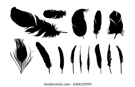 set of various of feather silhouette vector illustration