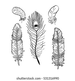 Set of various feathers. Vector linear drawing.