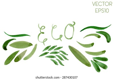 Set of various green watercolor hand drawn brush strokes of different shapes for eco design. Vector Illustration EPS10.