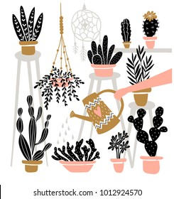 Set of various  indoor potted plants in boho interior . Great for gardening magazines , flower store or home poster. Vector illustration.