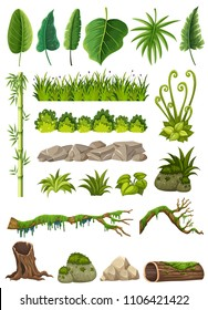 Set of various jungle objects illustration