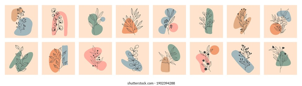 Set of Various Leaves and Flowers, abstract shapes. Round elements, abstract shapes, lines, floral. Minimalistic style. Vector stock illustration. Line art. Contemporary Hand drawn illustrations.