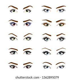 Set of various types of color female eyes isolated on white background. Template for Makeup. Training poster. Vector illustration.
