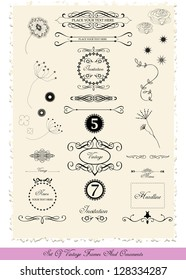 set of various vector labels, stickers and decorative symbols in vintage style