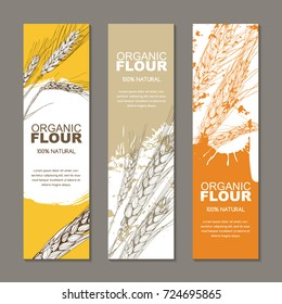 Set of vector backgrounds for label, package. Sketch hand drawn illustration of wheat ears. Concept for organic flour, harvest and agriculture, grain, cereal products, bakery, healthy food.