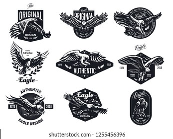 Set of vector birds. Eagles and hawks illustrations.