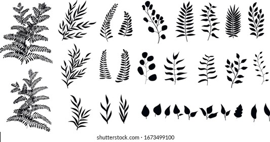 Set of vector black silhouettes of hand drawn branches and leaves.